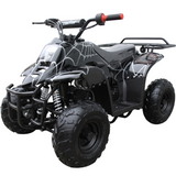 Coolster 110cc ATV-3050C 4 wheeler for kids free shipping black