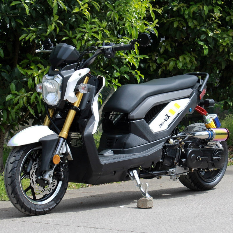 Buy dongfang 50cc rsport moped scooter df50stf street for Motorized bicycle california law