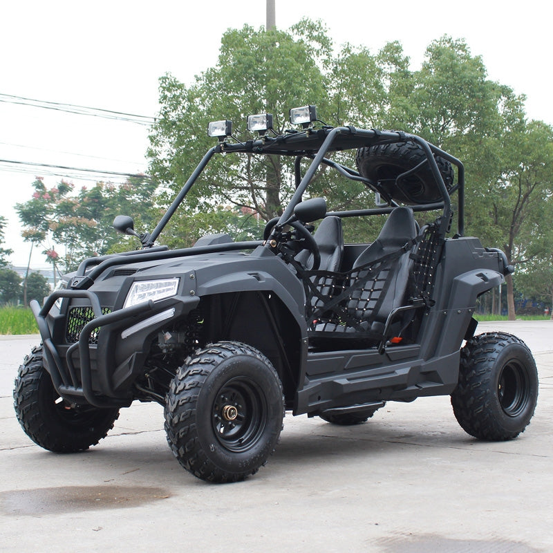Buy 200cc Armored Go-Kart Dune Buggy Two Seats Armor DongFang ...