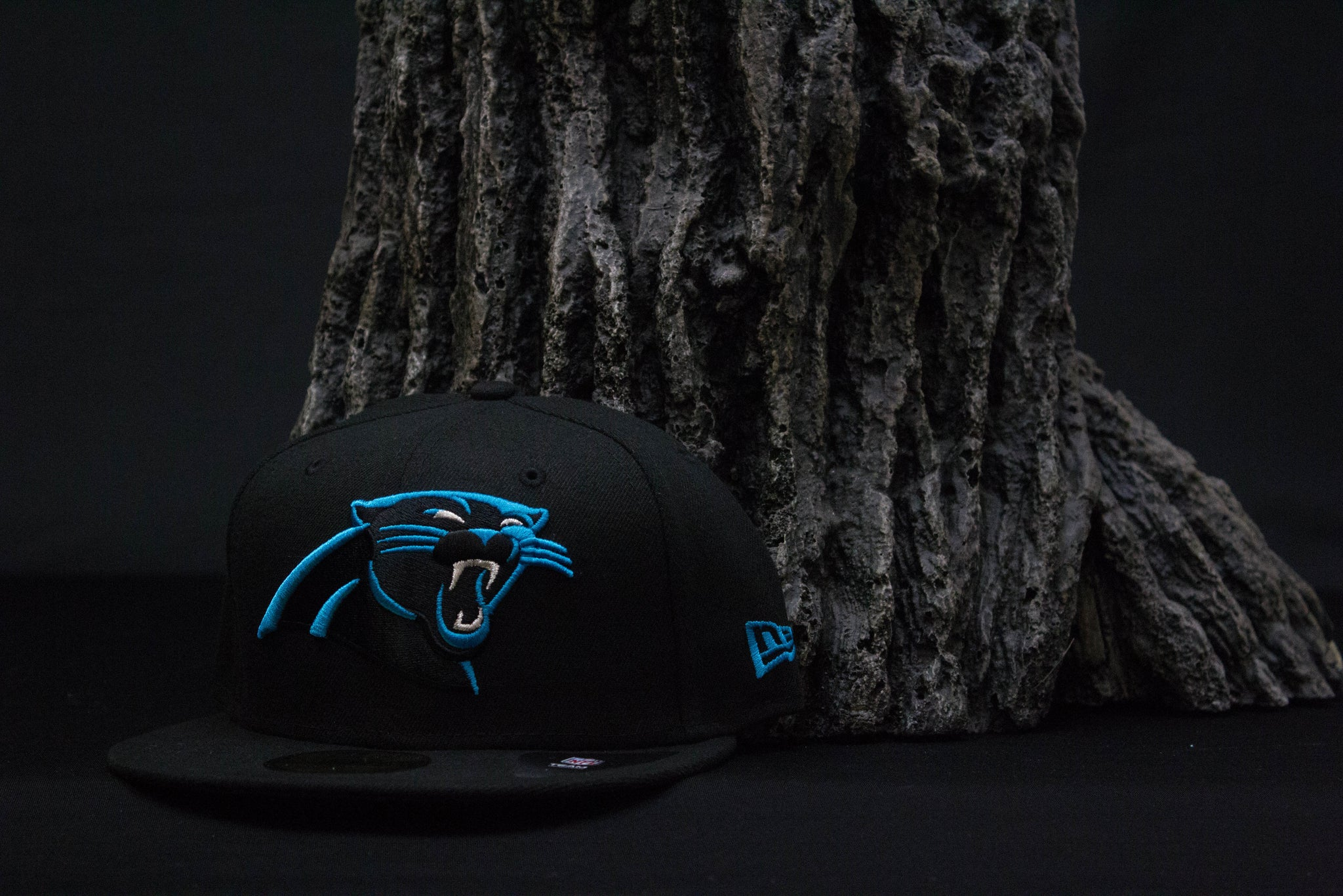 carolina panthers hat