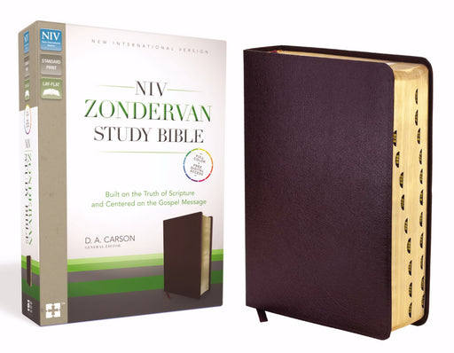 NIV Zondervan Study Bible-Burgundy Bonded Leather Indexed