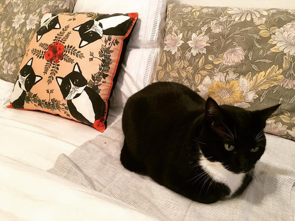 Cat and silk pillow