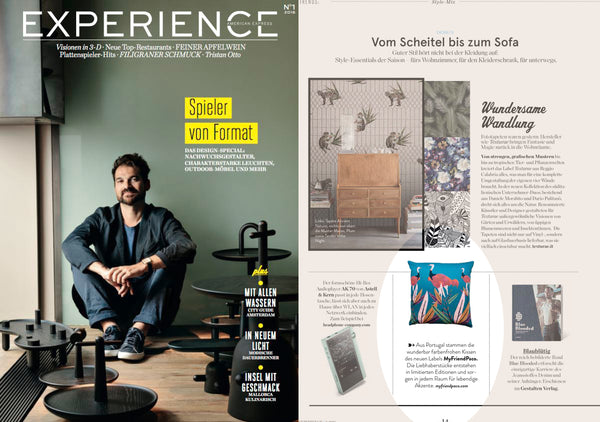 my friend paco printed designer cushion at German interior design magazine Experience