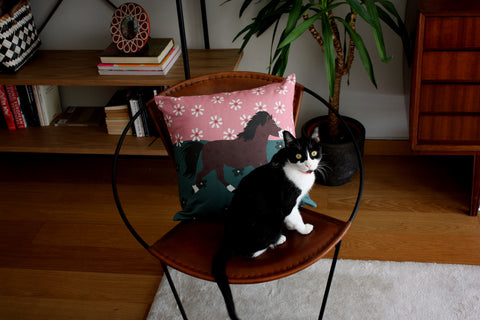horse linen cushion and cat