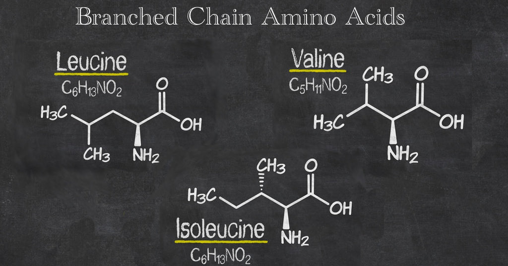 Image result for branched chain amino acids