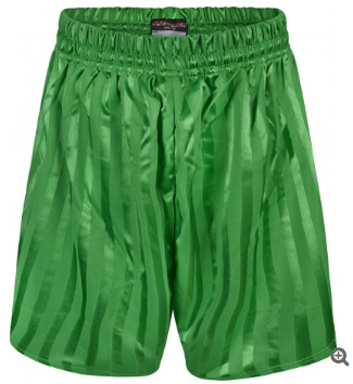 Orchard Primary P.E Shorts