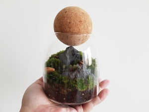 Crown Mountain - FAYY Terrarium & Gifts