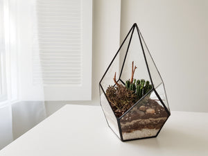 Geometric Terrarium Workshop - Planting With An Edge - FAYY Terrarium & Gifts