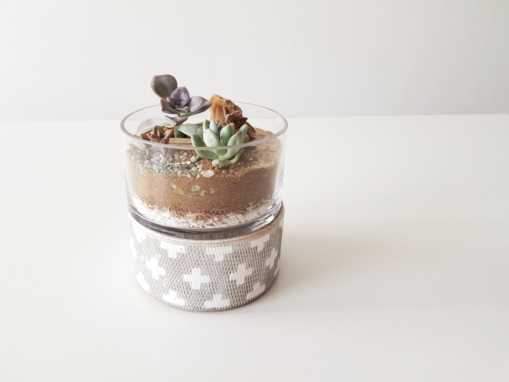 (+) Stay Positive Terrarium & Pot - FAYY Terrarium & Gifts