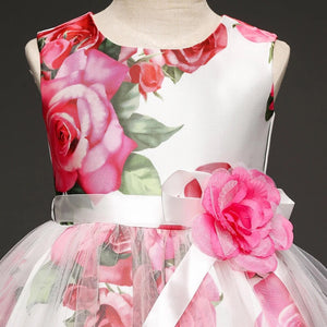 Rose garden dress 4-7 years