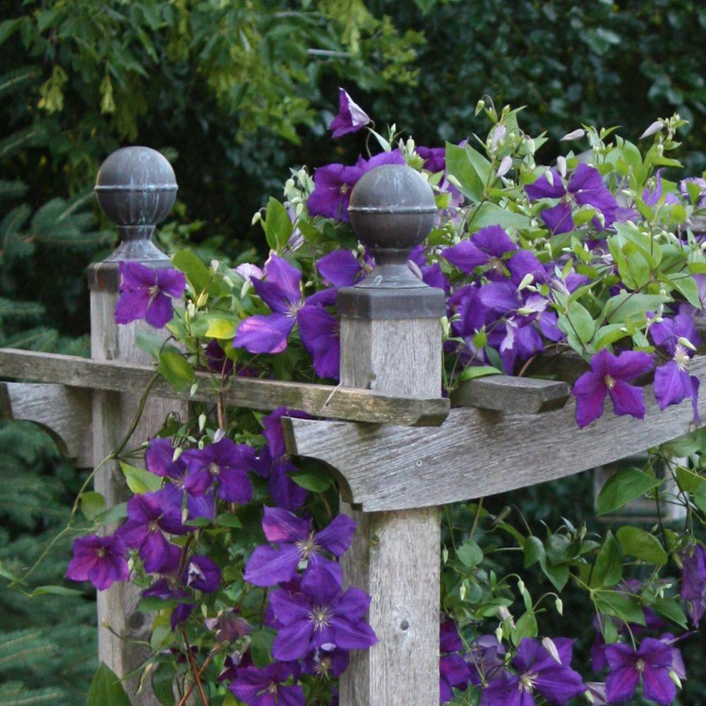 Fence Post Caps Provide Design, Protection and Reduce Maintenance on Fences