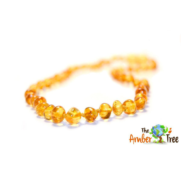 Polished Maple Baltic Amber Necklace