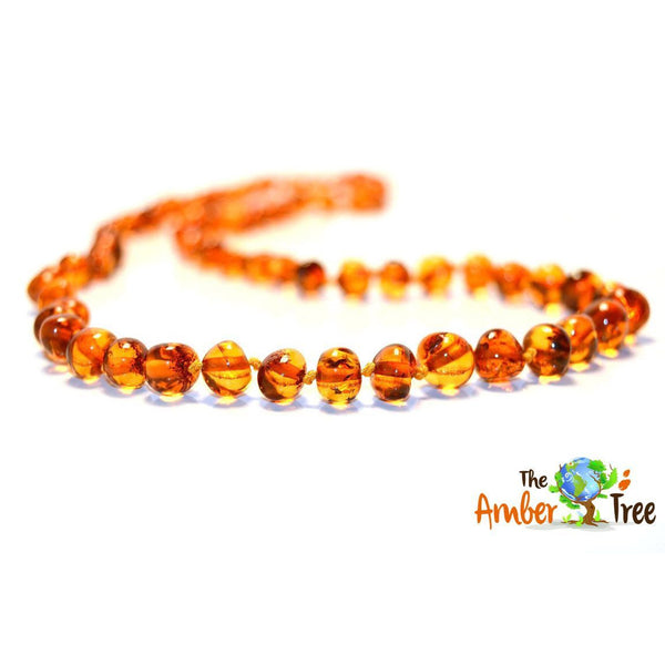 Polished Butterscotch Baltic Amber Necklace