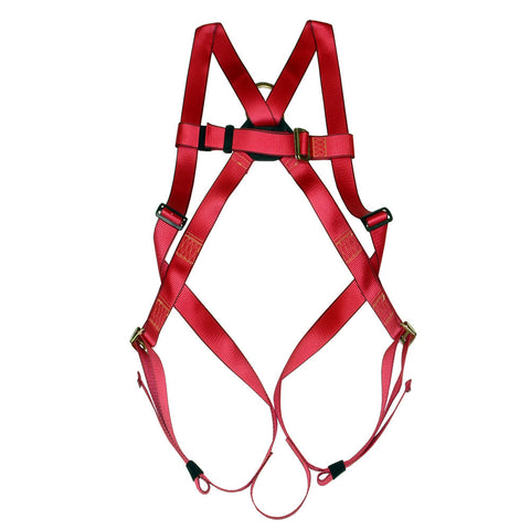 Basic Full Body Harness