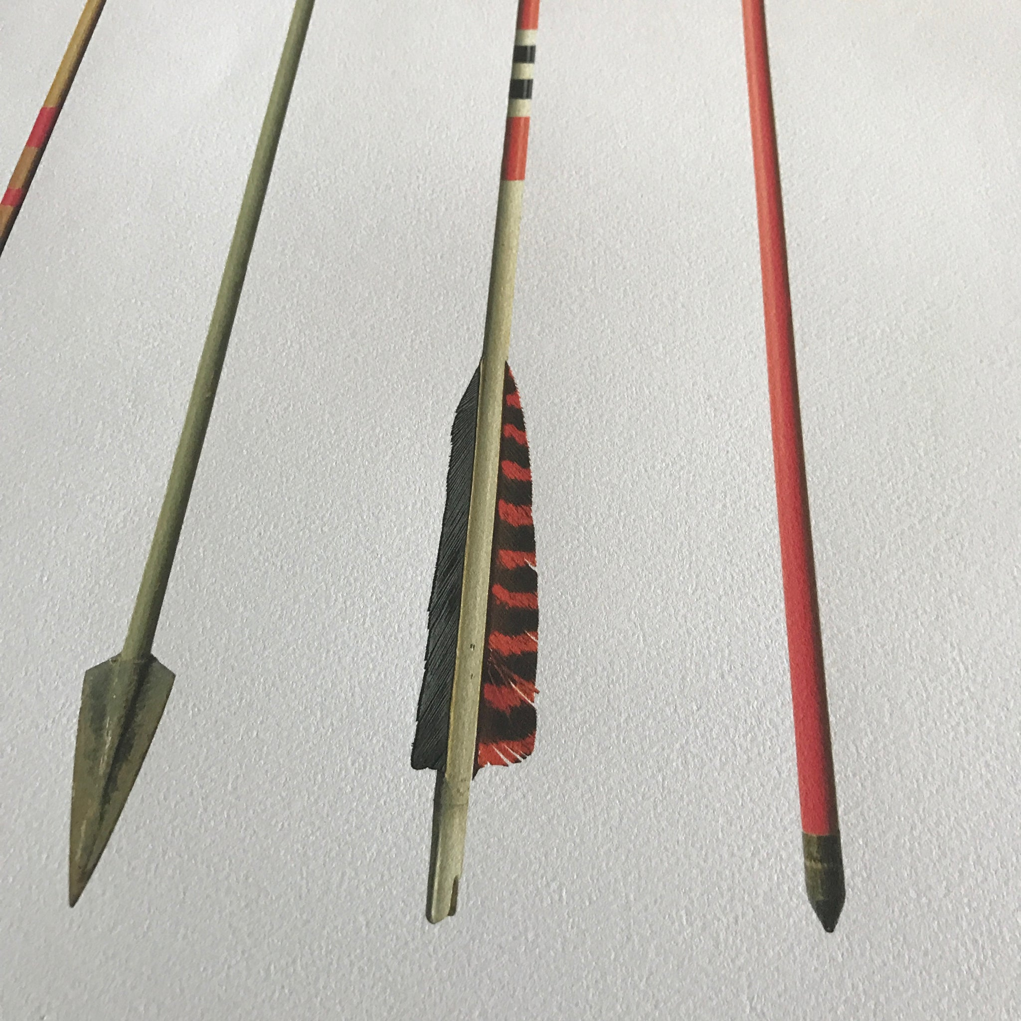 Vintage Arrow Study Number 3 by Barloga Studios
