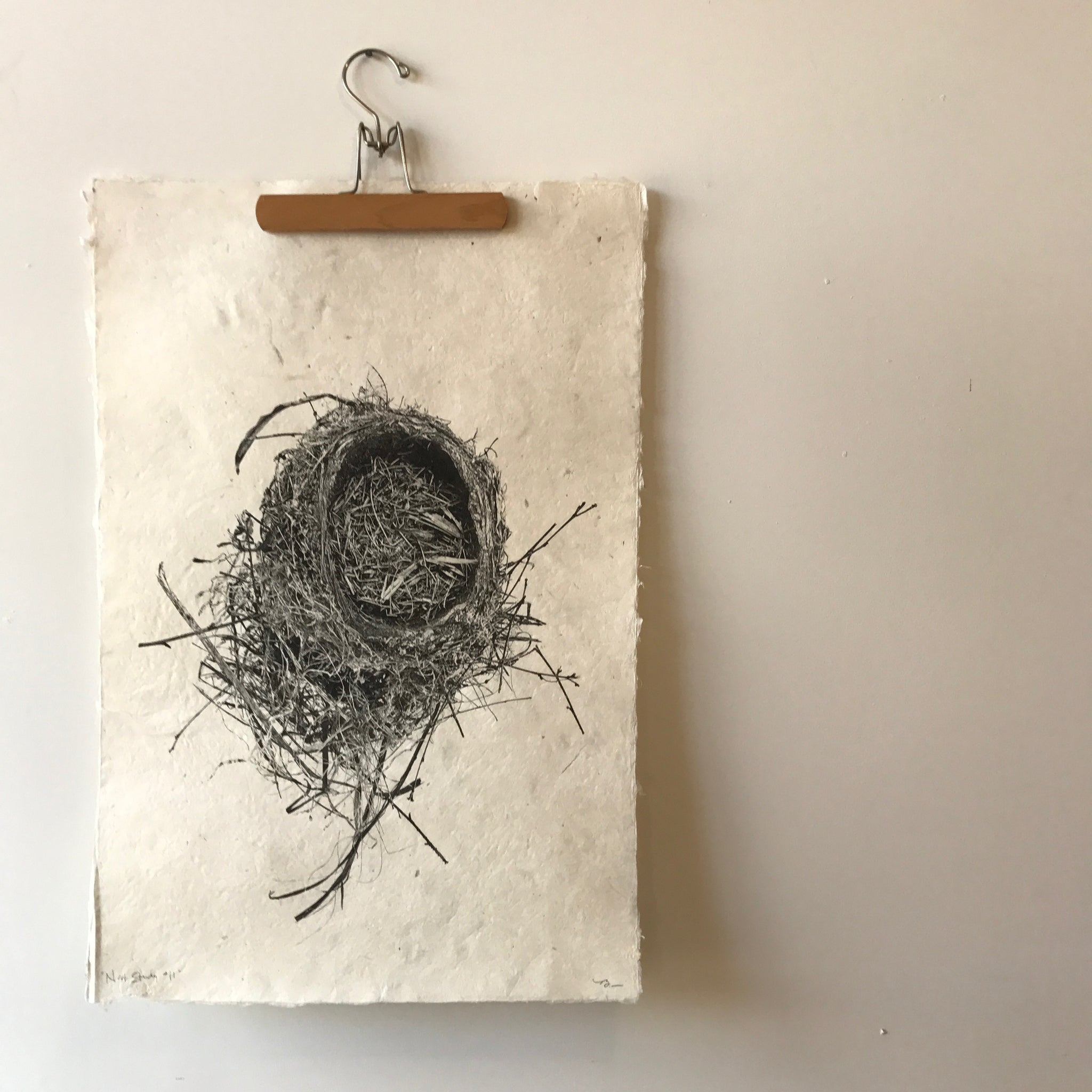 Nest Study Number 11 by Barloga Studios - Upstate MN