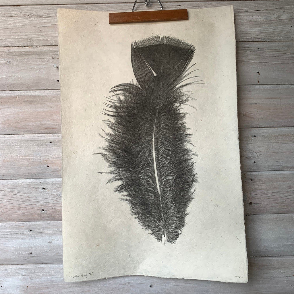 Feather Study Number 10 by Barloga Studios