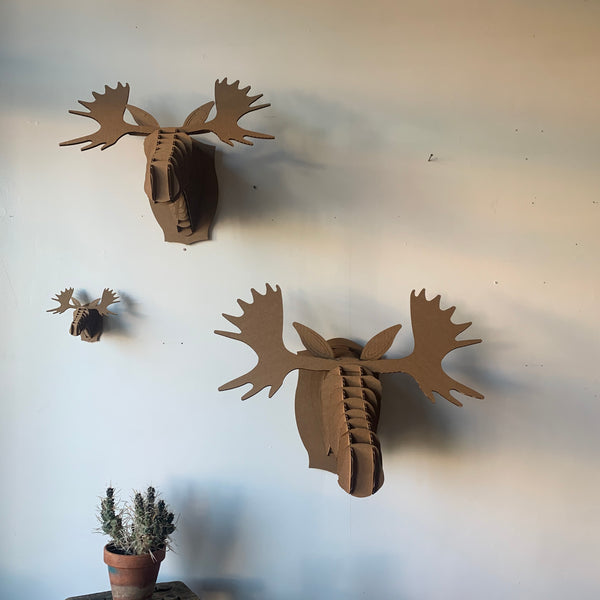 Fred The Moose Cardboard Mount Kit by Cardboard Safari