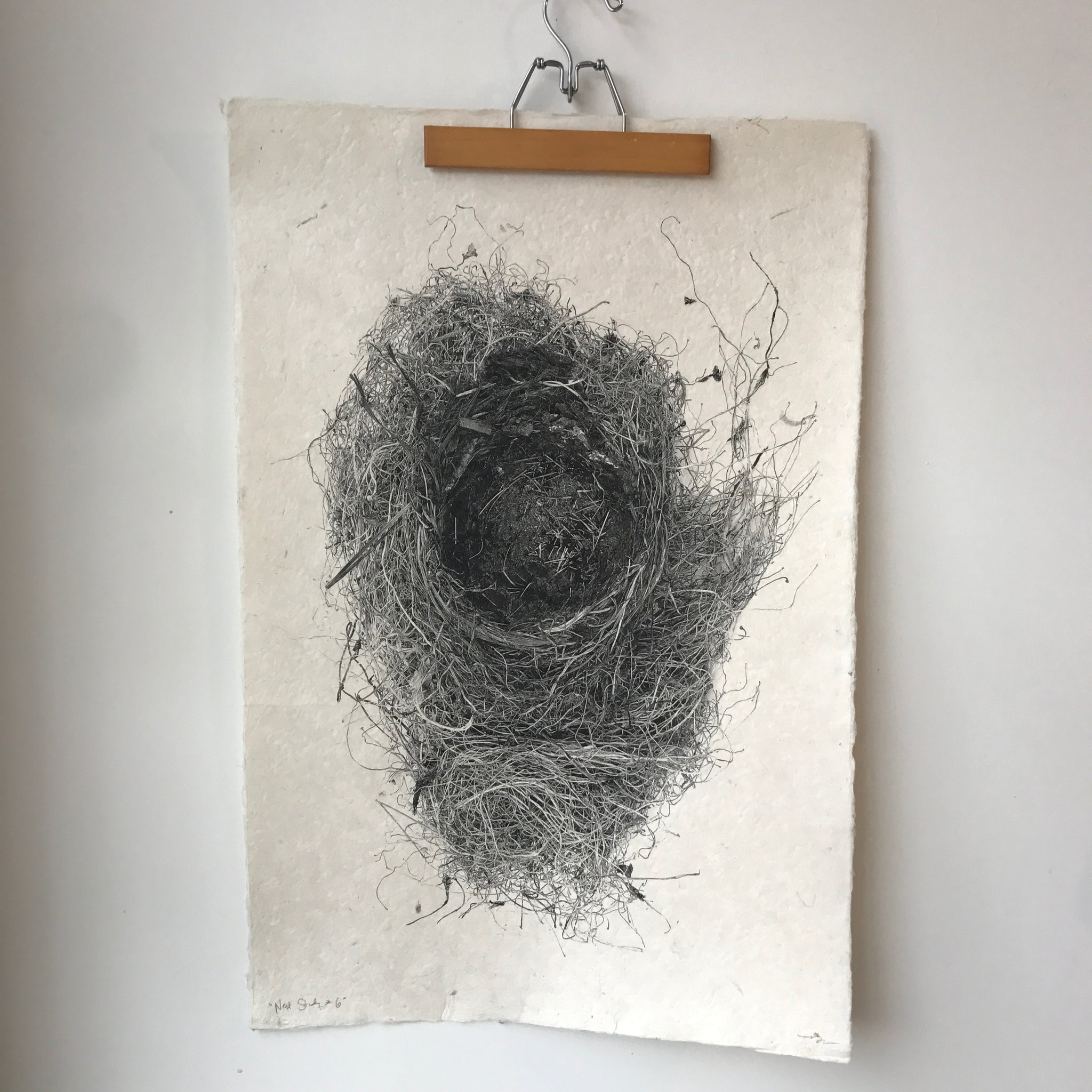Nest Study Number 6 by Barloga Studios - Upstate MN