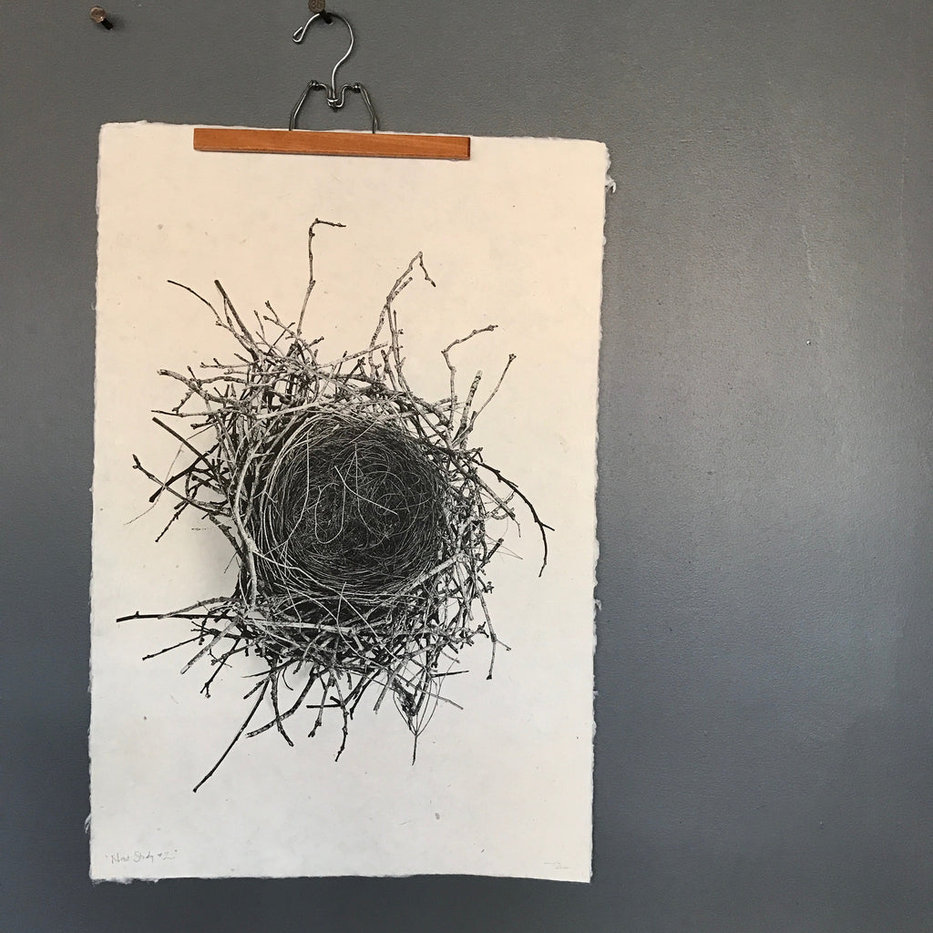 Nest Study Number 2 by Barloga Studios - Upstate MN