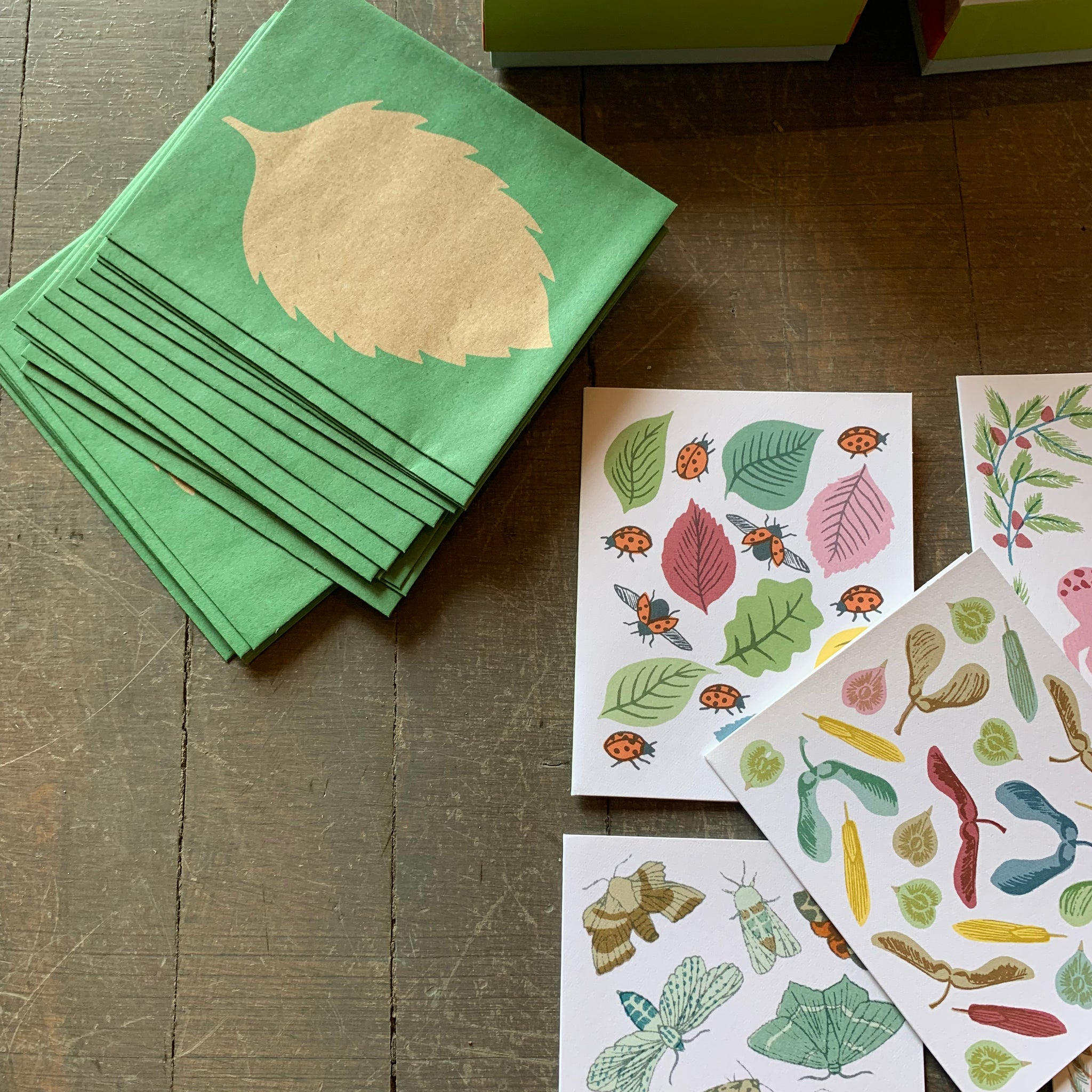 New Leaf Notecards by Sukie - Upstate MN