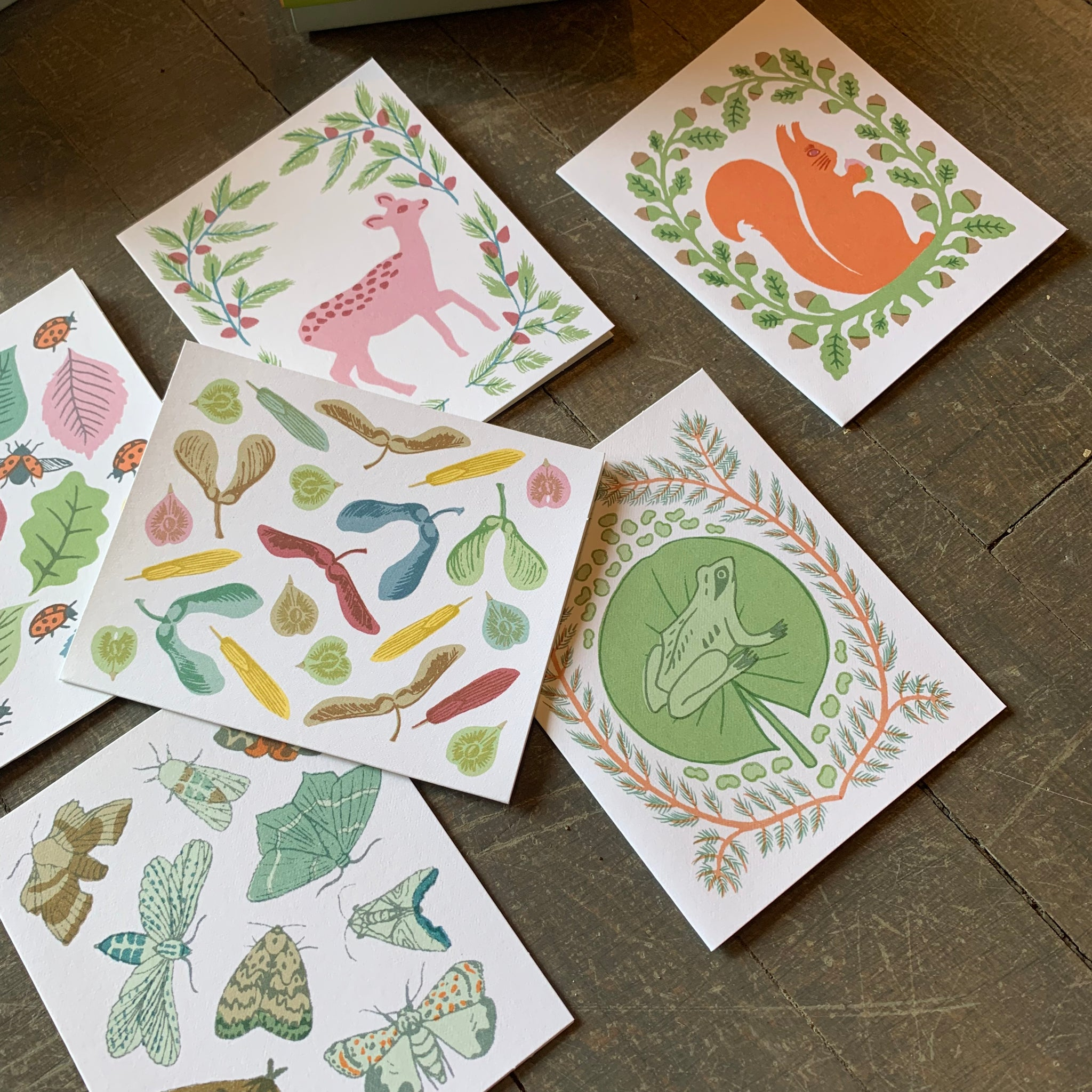 New Leaf Notecards by Sukie