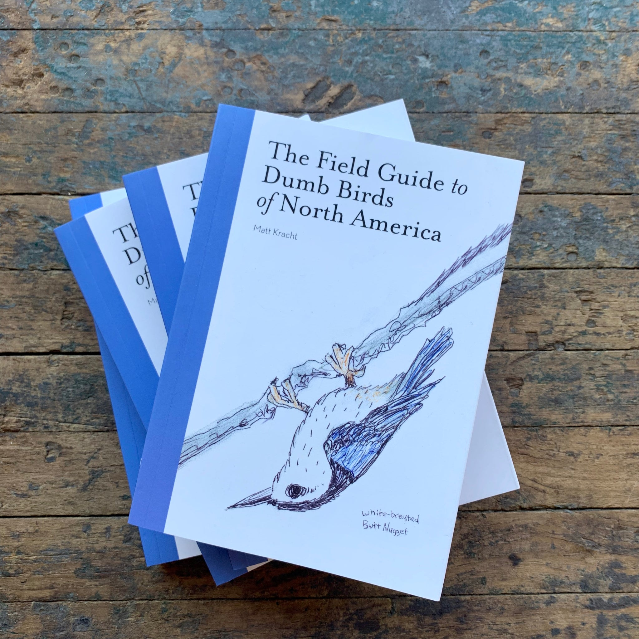 The Field Guide to Dumb Birds of North America - Upstate MN
