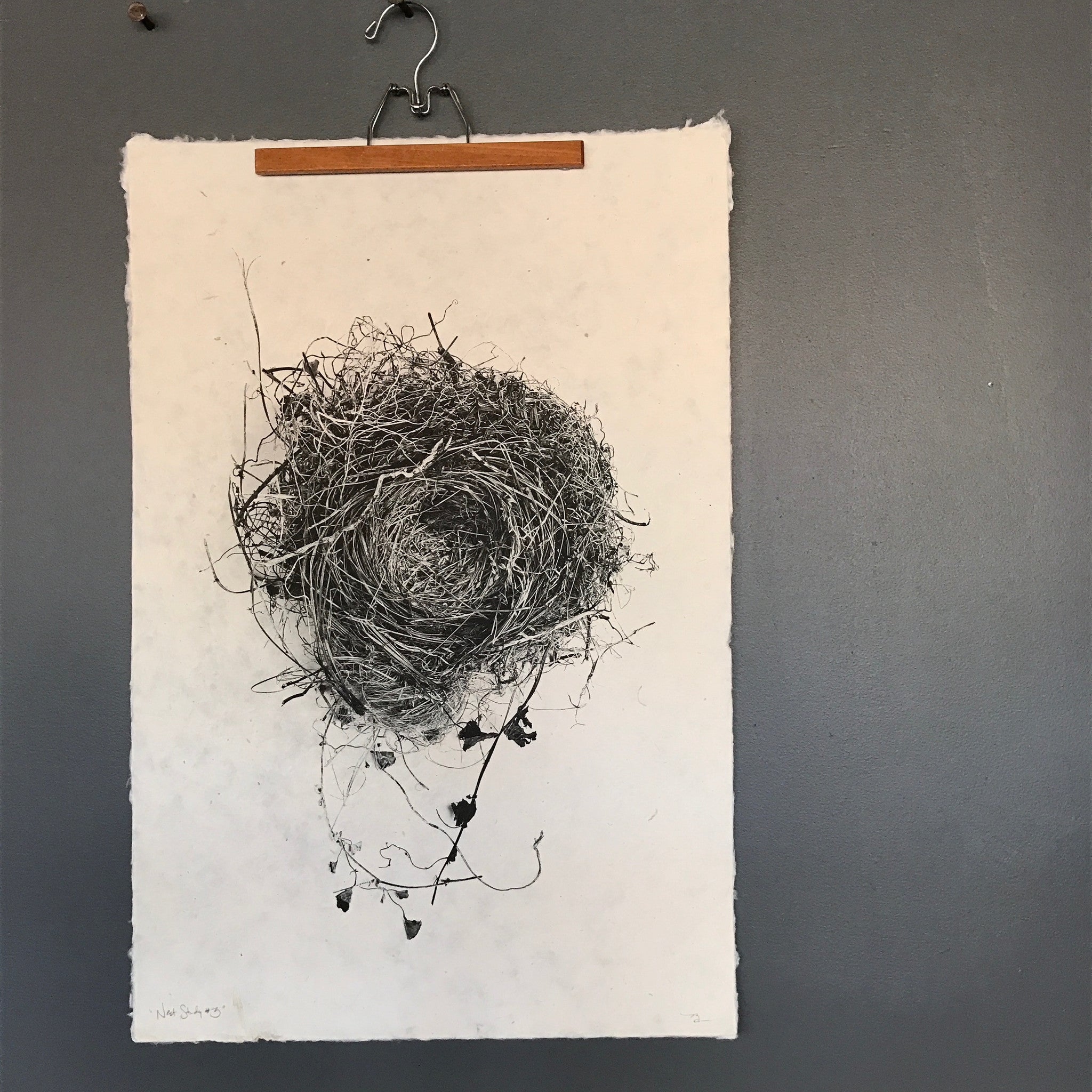 Nest Study Number 3 by Barloga Studios - Upstate MN