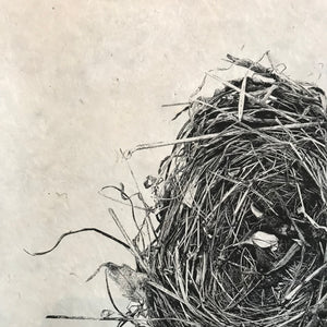 Nest Study Number 8 by Barloga Studios - Upstate MN