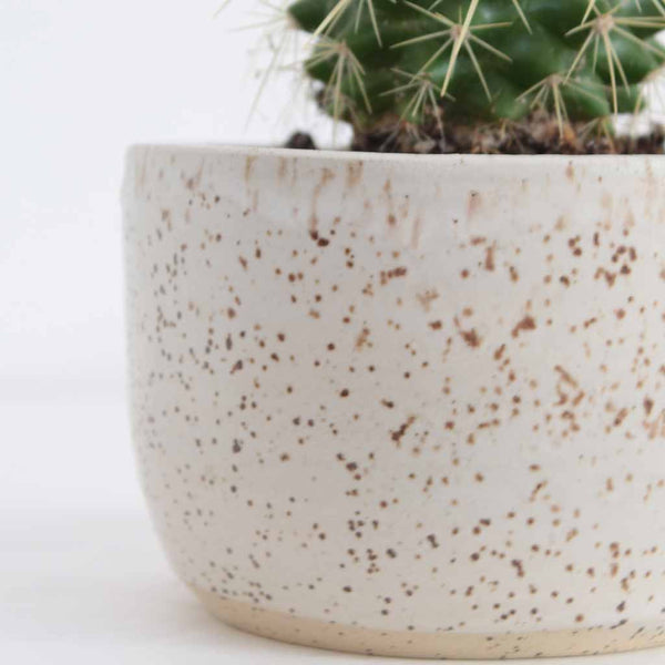 Speckled Stoneware Ceramic Succulent Pot - Medium