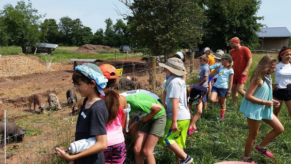 Farm to Fork (Middle School Ages 11 - 14) July 9th to July 13th, 2018