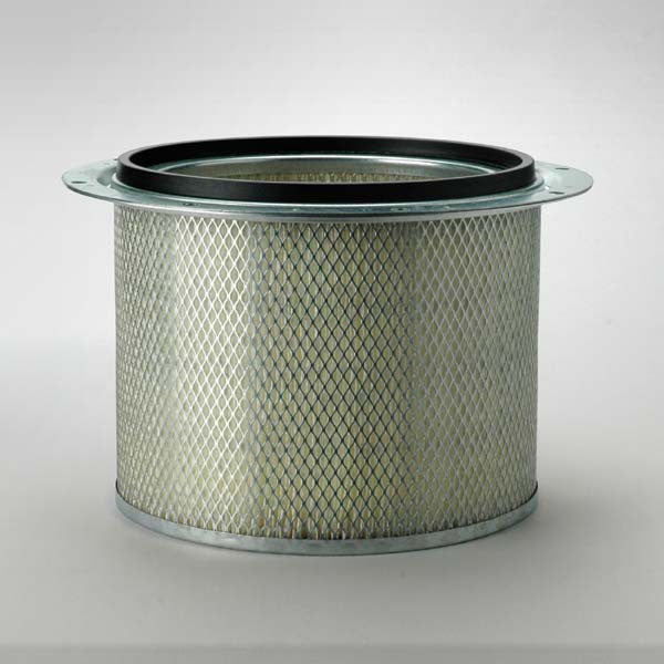 Donaldson Air Filter Safety- P523048