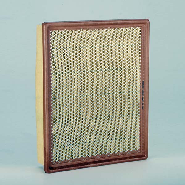 Donaldson Air Filter - P602657