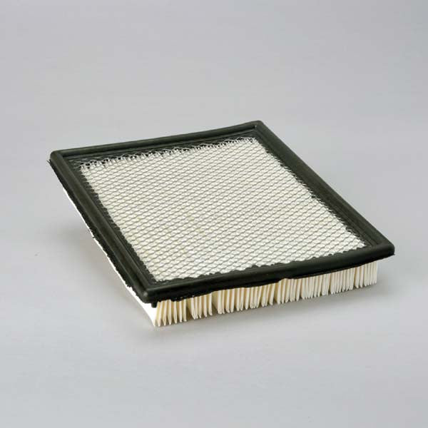 Donaldson Air Filter - P606063