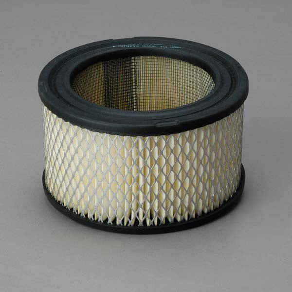 Donaldson Air Filter - P607234