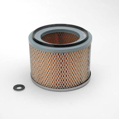 Donaldson Air Filter - P607275