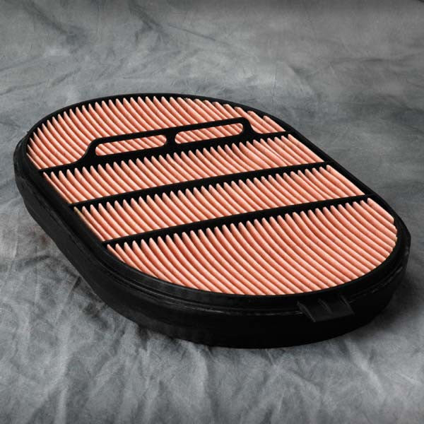 Donaldson Air Filter - P607557