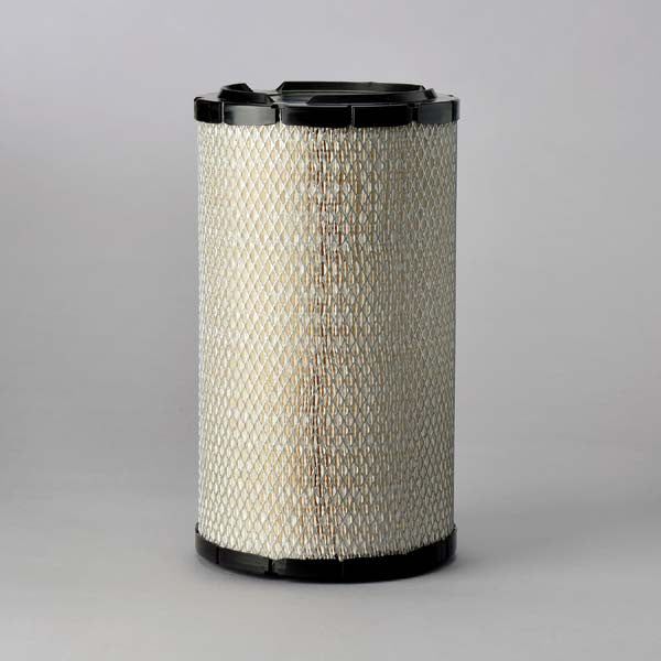 Donaldson Air Filter - P821883