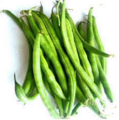 Heirloom Seed Vault - Bountiful Bush Bean