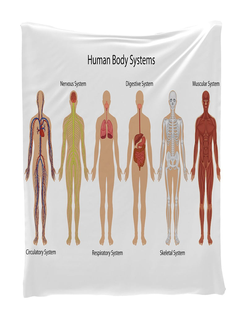 "Human Body Systems Educational Tapestry Wall Hanging Wall Tapestry - 40""Wx60""L - Living Room / Bedroom / Dorm Decor - One of a Kind - Machine Washable - Shiny Silky Satin"
