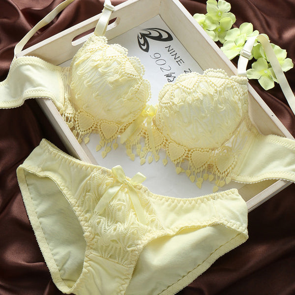 New Hot Sale sexy lingerie,bra brief sets,underwear bra sets , Tassels bar underwear,sexy young girl bra set Free shipping