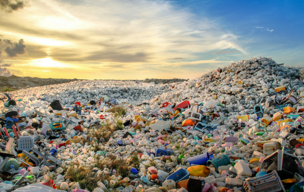 A Look at Plastics' Toll – And What We Can Do About It