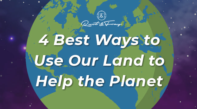 The 4 Best Ways to Use Our Land to Help the Planet