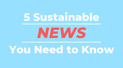 5 Sustainable News You Need to Know
