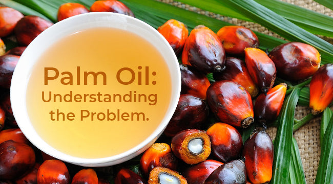 Palm Oil: Understanding the Problem.