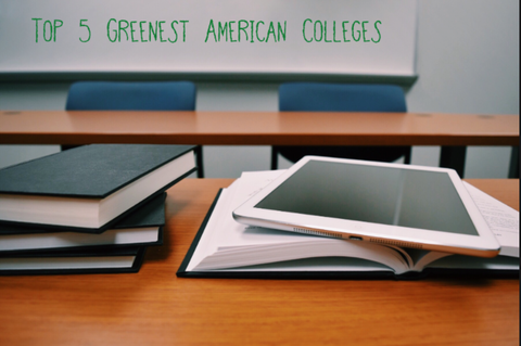 Top 5 Greenest American Colleges