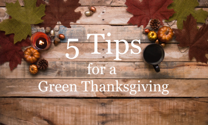 5 Tips for a Green Thanksgiving