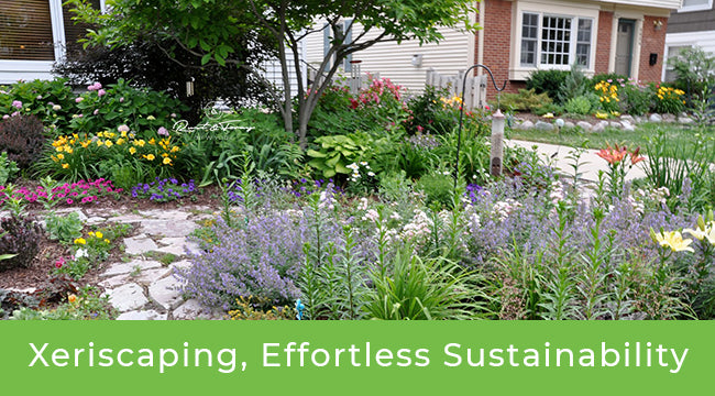 Xeriscaping: Effortless Sustainable Landscaping