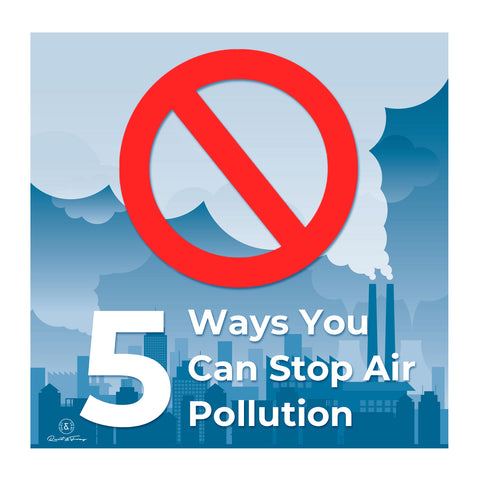 5 Ways You Can Stop Air Pollution