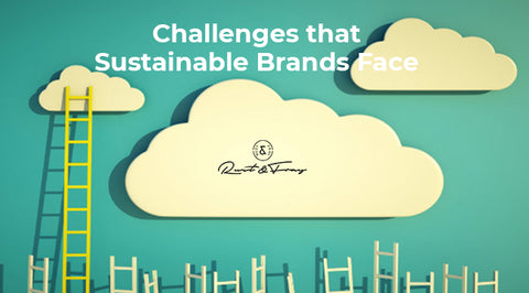 Challenges that Sustainable Brands Face
